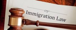 You Need An Immigration Lawyer