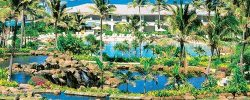 What Should You Opt- Vocational Club Or Timeshare Vacations Packages?